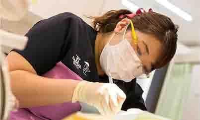 定期健診で歯を守りたい